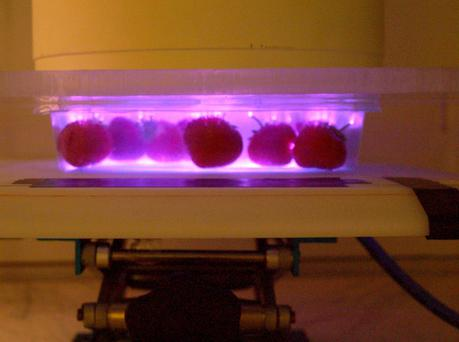 'Cold plasma' technology can help eliminate harmful micro-ogranisms on strawberries.