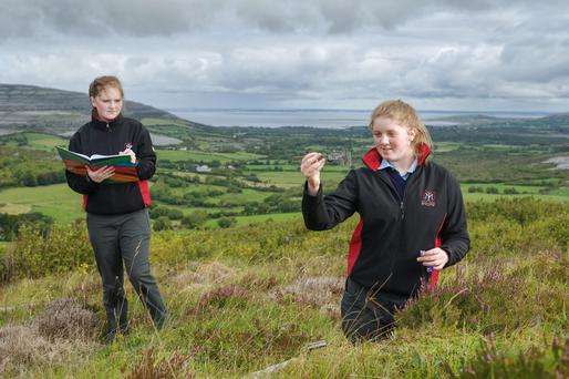 Great outdoors: Aoife Dowling (right) uses a digital calipers to measure the flowers of a hare bell plant while Chloe Geraghty takes notes. Photograph: John Kelly.