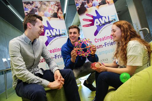 Helping hands: Adam Harris (left) with student ambassadors Conor Gilligan and Olivia Forde at the Autism Experience exhibition at DCU