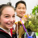 Alicia Hickey and Anand Enkhtulga from Rutland Street NS, Lower Gloucestor Place and their project 'Mary, Mary Quite Contrary, 'How can our (Sheltered Inner City) garden grow?' at the RDS Primary Science Fair.