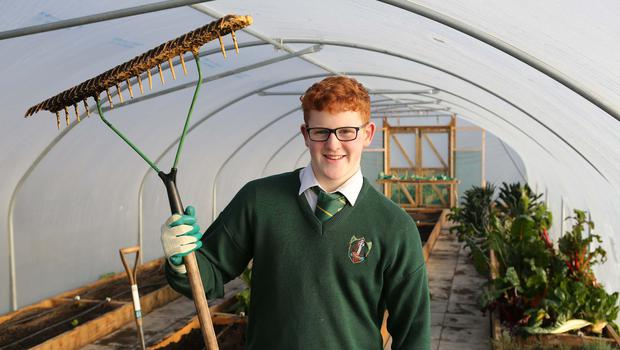 Conor Canning from Moville College