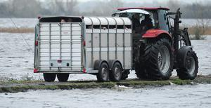 Mourners are transported in a cattle trailer to Saints Island Graveyard. Photo: James Flynn/APX