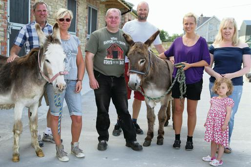 Danny Curran (centre) meets Daniel and Ingela Reinholdsson, Patrike Sármens and Monica Andersson when they arrived to choose donkeys to take back to Sweden Also pictured are Sandra Curran and Elsa Curran.