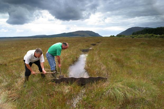 HABITAT RESTORATION: Coillte staff block drains on a Co. Mayo bog as part of a habitat restoration project in the Nephin Beg wilderness