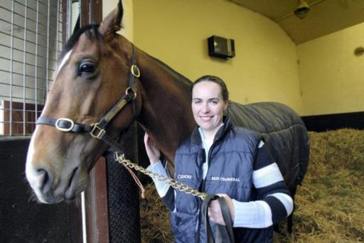 OPPOSITION: Annemarie O'Brien of Ballydoyle has warned of the possible damage to the equine industry from power lines