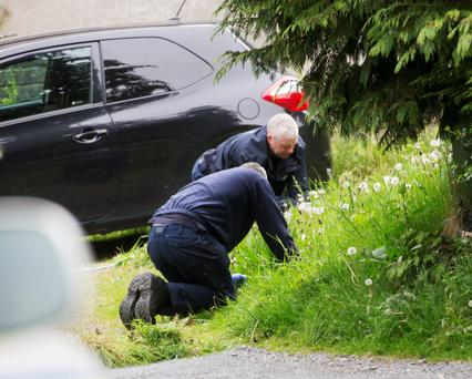 Gardai search the undergrowth at the house at Laragh at the centre of a robbery last night
