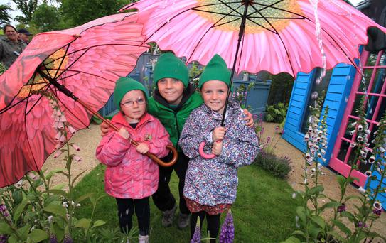 Amelia (5), Alex (9) and Sophia (7) Hearty from Cavan;