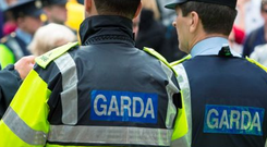 The plan is part of a massive overhaul of garda technology and will be a major boost for the force, after several damning reports criticised the organisation's outdated systems