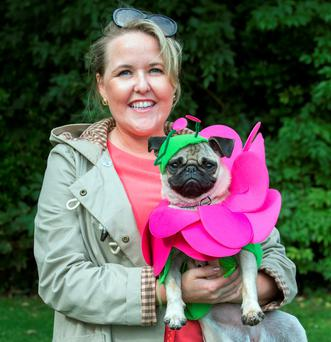 FASHION TAILS: Taking part in The Doggie Do Dog of Dublin competition in Merrion Square were Orla Donahy and her dog Isabella