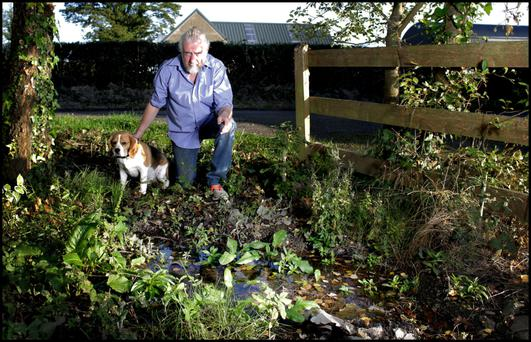 BEYOND A JOKE: Willie Kealy, pictured here with his dog Bruno, has a water leak outside his house, which has become a home for his duck