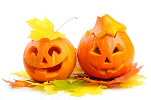 A host of family activities are guaranteed to frighten and entertain in equal measure this week