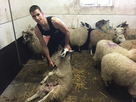 Ivan Scott set the new world record for sheep shearing