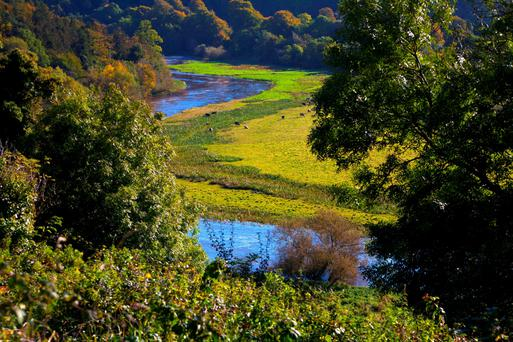 The River Boyne at Dowth, near Drogheda Picture: Fennell Photography