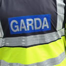 'If hoodlums throw down a gauntlet, then gardaí must strike back' (stock picture)