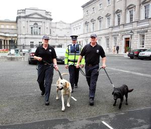 The Garda Dog Unit does a sweep of Leinster House as the Dail returns from its summer recess.