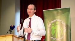 Spirit of calm: Many in Fine Gael are now saying it may be a case of 'beware the quiet man', when it comes to Simon Coveney. Photo: Sean Curtin