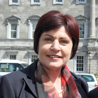 Rural Affairs Minister Ann Phelan lashed out at Planning Minister Paudie Coffey over proposed changes to the Kilkenny border