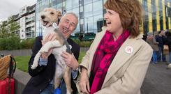 Tánaiste Joan Burton canvassing with Kevin Humphries TD and a dog Oscar, at the Docklands Festival in Grand Canal Dublin yesterday