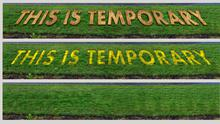 This Is Temporary by Mimi Seery