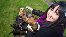 Six of the best: Andrea Smith and her dogs Poppy, Lenny, Toby, Tatty, Tiny and Rosie. Photo: Mark Condron.