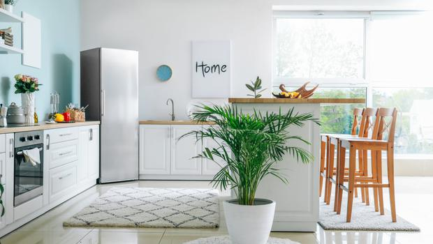 White goods: you're going to be living with these items