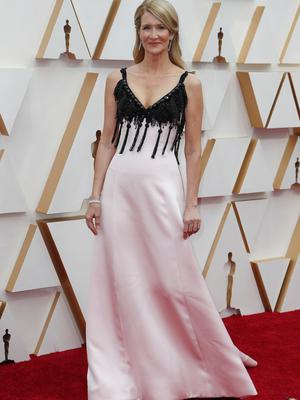 Laura Dern poses on the red carpet during the Oscars arrivals at the 92nd Academy Awards in Hollywood, Los Angeles, California, U.S. REUTERS/Eric Gaillar