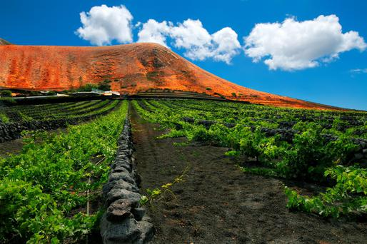 Lanzarote offers stunning vistas, including those in the volcanic landscape of Timanfaya National Park