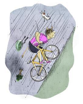 The New Cycling