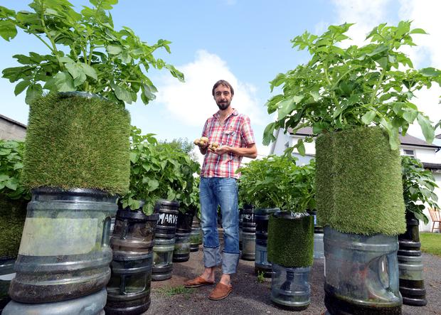 Andrew Douglas, with his potato plants of many different varieties