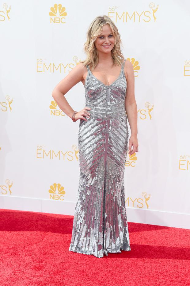 Amy Poehler shimmers in Irish designer Don O'Neill's THEIA Couture gown.