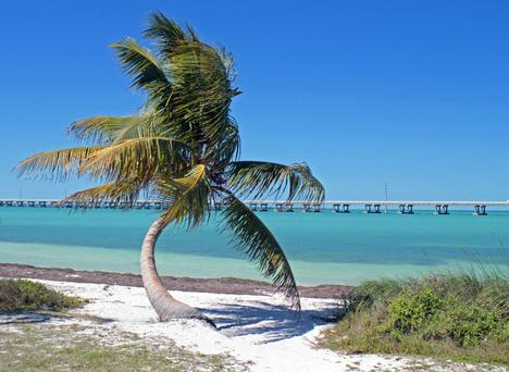 Florida Keys This Is Not America Independent Ie