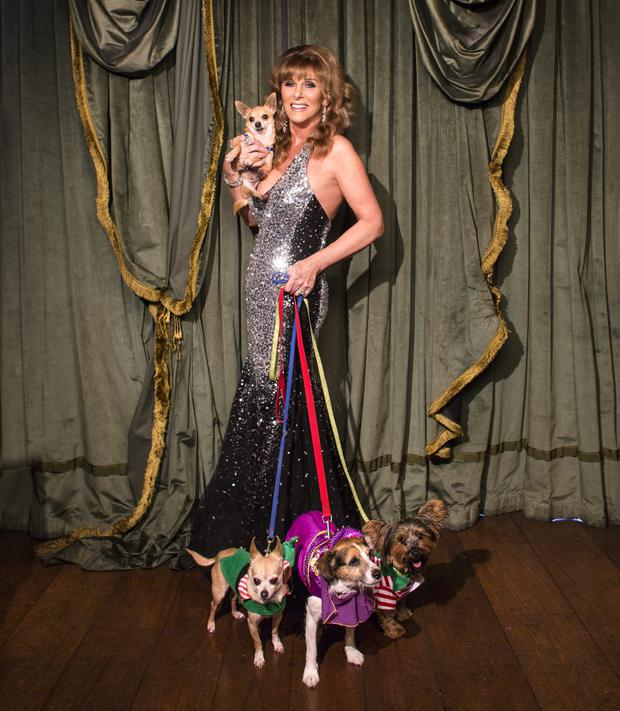 Singer, actress and TV presenter Linda Martin in 2014, with her dogs, Scruff, Bubba, Rambo and, in her arms, Chilli Willi