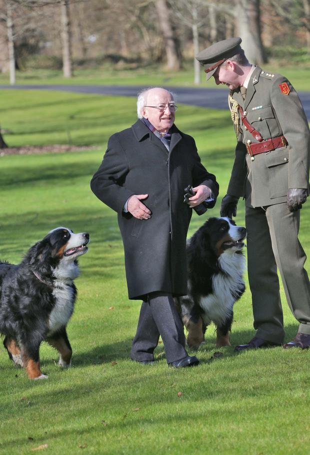 The president at the Áras with his two dogs, Bród and Sioda