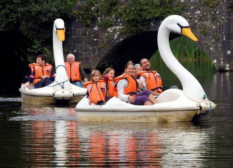 Swan boats at Westport thouse