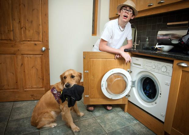 Doggy day care: Danny Millar and his dog Fergus do the washing.