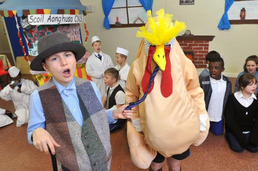 Scoil Aonghusa Community National School, Carrigoon, Mallow, Co Cork rehearsing their Christmas play 'Tommy the Turkey Ran Away'. Photo: Daragh Mc Sweeney/Provision