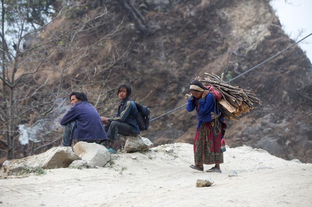 A woman collects firewood for cooking in the Langtang mountain range in Rasuwa. Photo: Mark Condren