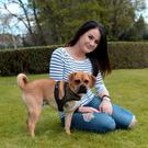 Hounds of love: Noelle O'Reilly and her eight-month-old Puggle Charlie, who is now a tripawd after undergoing a life-saving leg amputation. Photo: Caroline Quinn