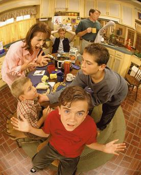 Gifted: Frankie Muniz played a child genius in a dysfunctional family in Fox TV series 'Malcolm in the Middle'.