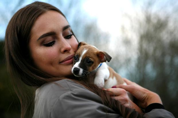 Roz Purcell and Miniature Jack Russell Wilko, 5 months