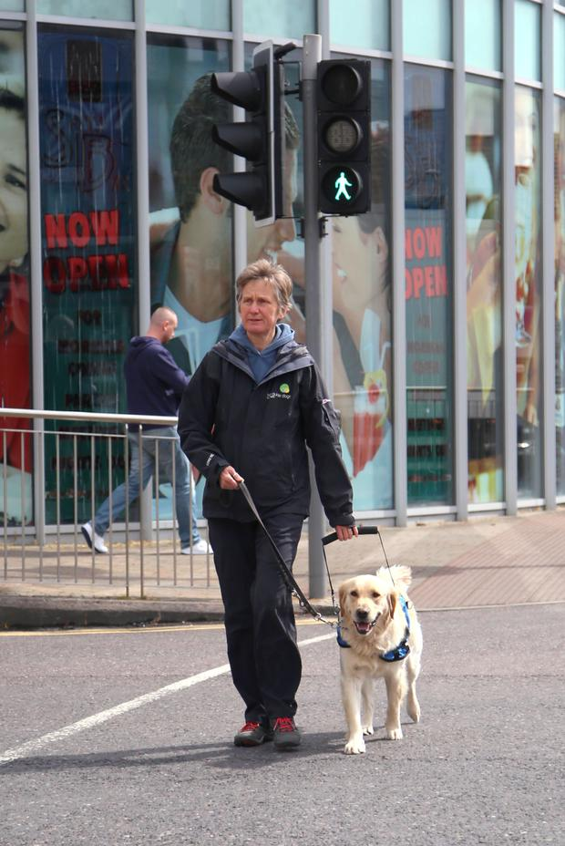 Dedicated: Jayne Husband has been training guide dogs for 31 years