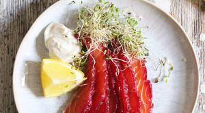 Beetroot Salmon Gravadlax