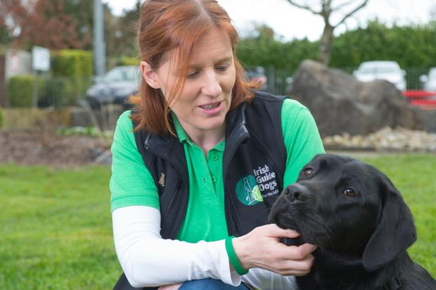 Aileen Foy, Client Liason Officer and Assistant Instructor with guide dog Ellis