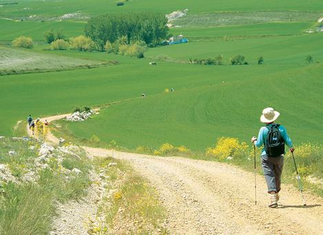 Walking the Camino can be hard work, but with a little careful planning one can take the backbreaking slog out of it by organising the odd baggage lift here and there