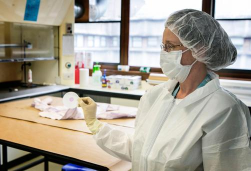 Swab team: A technician at Forensic Science Ireland examines a crime scene sample; and inset, Dr Geraldine O'Donnell, director of DNA at FSI. Photo: Kyran O'Brien