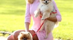Rosanna Davison with her two Pomeranian pooches Leo and Ted. Photo: Robbie Reynolds