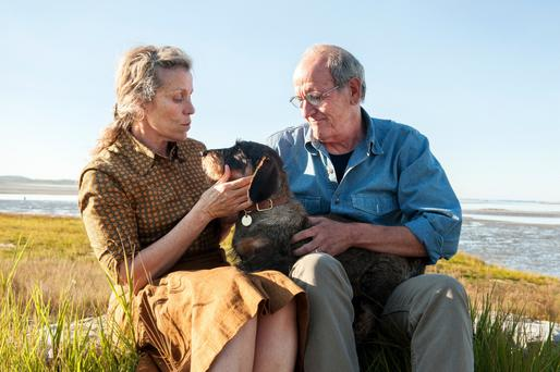 Rural setting: Frances McDormand and Richard Jenkins star as Olive and Henry in the TV adaptation of Olive Kitteridge