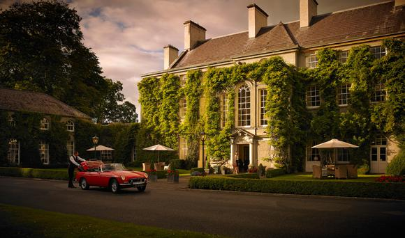 Paddy Daly, 'former gardener for more than 40 years at Mount Juliet (back when it was still a 'Big House' and not a five-star hotel) knows the secret whereabouts of the last rose of summer.'