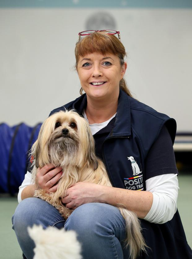 Hands-on approach: Liz McDonagh owner of Positive Dog Training in Dublin with Pino a Maltese/Yorkie Cross. Photo: Frank Mc Grath