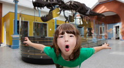 Dinosaur junior: Dublin Zoo will host special workshops where kids can learn about dinosaurs. Photo: Patrick Bolger